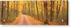 Path Hickory Run State Park Pa Usa Acrylic Print by Panoramic Images