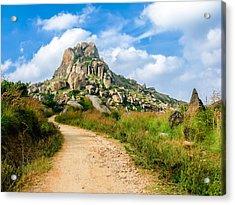 Path Into The Hills Acrylic Print