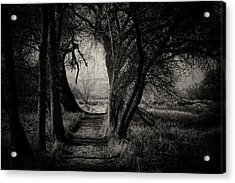 Path- Kern River Preserve Acrylic Print