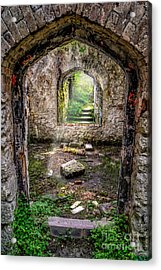Path Less Travelled Acrylic Print by Adrian Evans