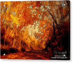 Path Of Gold Acrylic Print by Tami Quigley