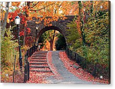 Path Of Leaves Acrylic Print