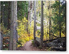 Path Of Peace Acrylic Print