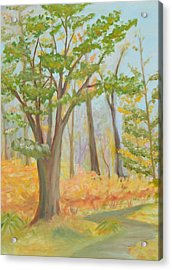 Path Of Trees Acrylic Print