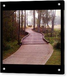 Path Acrylic Print by Scott Pellegrin
