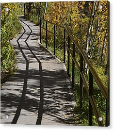 Path Shadow Acrylic Print