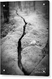 Path Taken Acrylic Print by Edward Fielding