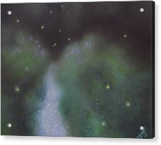 Path To Asters And Fireflies Acrylic Print