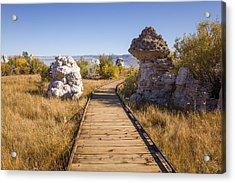 Path To Mono Lake Acrylic Print