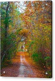 Path To The Fairies Acrylic Print