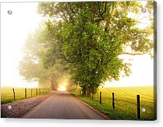 Path To  The Fog Acrylic Print by Andrew Soundarajan