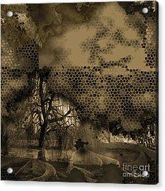 Path Acrylic Print by Yanni Theodorou