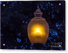 Pathlight Acrylic Print