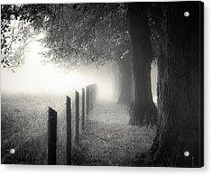 Pathway Acrylic Print by Chris Fletcher