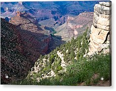 Pathway In Canyon Acrylic Print by Nickaleen Neff