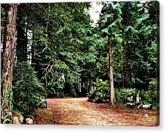 Pathway In The Forest Acrylic Print by Rafael Escalios