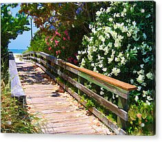 Pathway To Beach Acrylic Print