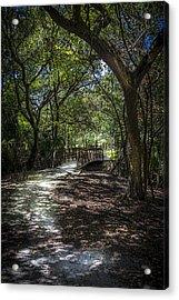 Pathway To The Bridge Acrylic Print