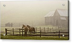 Acrylic Print featuring the photograph Patiently Waiting by Joan Davis