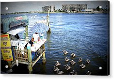 Acrylic Print featuring the photograph Patiently Waiting by Laurie Perry