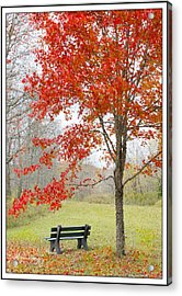 Acrylic Print featuring the photograph Patiently Waiting by Mariarosa Rockefeller