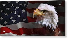 Patriot United States Acrylic Print by Daniel Hagerman