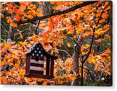 Acrylic Print featuring the photograph Patriotic Birdhouse - 01 by Wayne Meyer