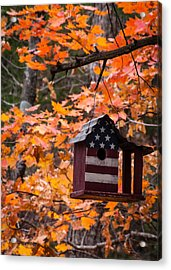 Acrylic Print featuring the photograph Patriotic Birdhouse - 02 by Wayne Meyer