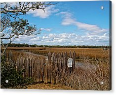 Pawley's Picket Fence Acrylic Print by Sandra Anderson