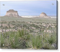 Pawnee Buttes Acrylic Print