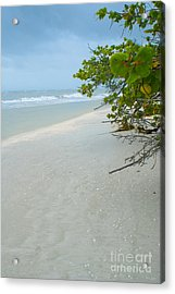 Peace And Quiet On Sanibel Island Acrylic Print
