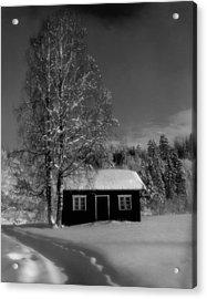 Peace   Acrylic Print by Viggo Mortensen