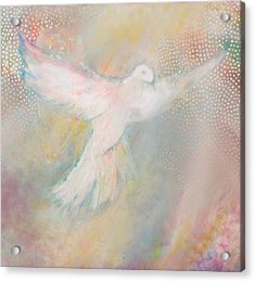 Peace Dove Acrylic Print by Anne Cameron Cutri