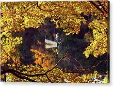 Peace Acrylic Print by Joann Vitali