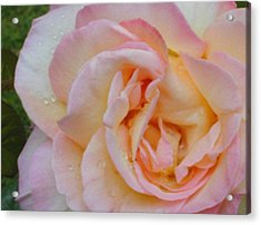 Acrylic Print featuring the photograph Peace by Linda Whiteside