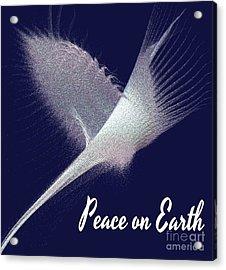 Peace On Earth Dove Of Love Acrylic Print