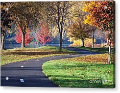 Peaceful Autumn Path II Acrylic Print