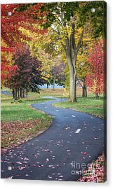 Peaceful Autumn Path Winona Photo Acrylic Print by Kari Yearous