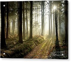 Acrylic Print featuring the photograph Peaceful by Boon Mee