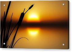 Peaceful Dawn Acrylic Print by Bob Orsillo