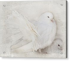 Peaceful Existence White On White Acrylic Print by Barbara McMahon