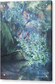 Peaceful Interlude Acrylic Print by Mary Lynne Powers