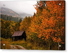 Acrylic Print featuring the photograph Peaceful by Ken Smith
