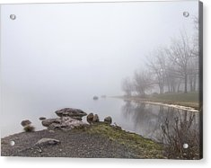 Acrylic Print featuring the photograph Peaceful Morning by Yelena Rozov