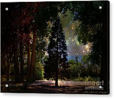 Magical Night At The River Acrylic Print