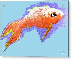 Peaceful Orange Goldfish Acrylic Print