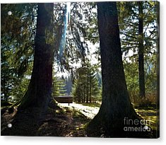 Acrylic Print featuring the photograph Peaceful Setting  by Laura  Wong-Rose