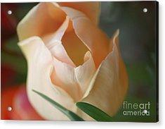 Acrylic Print featuring the photograph Peach Harmony by Mary Lou Chmura