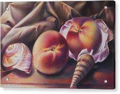 Peaches And Seashells Acrylic Print by Nathalie Beck