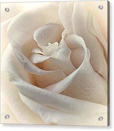 Peaches N Cream Acrylic Print by Darlene Kwiatkowski